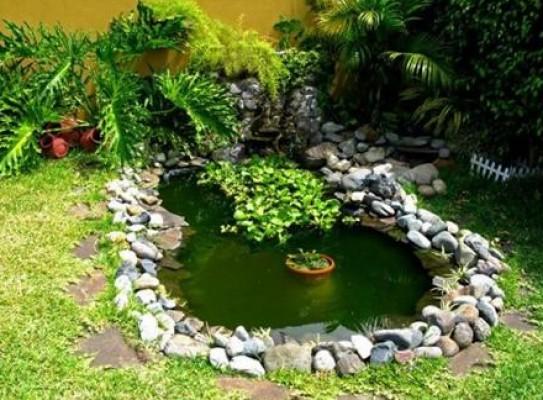 Estanques mois s le n - Peces para estanque ...
