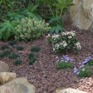 jardineria-y-paisajismo-moises-j_image-leon-jardines-03
