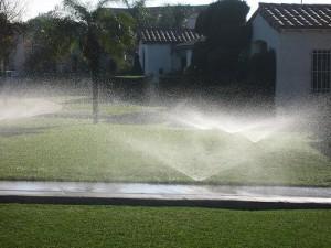 Diseñador de sistemas de riego en el jardín