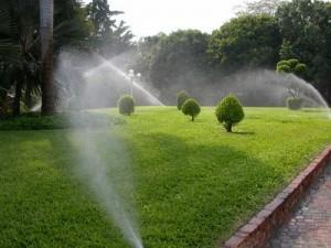 Instalador de sistema de riego en el jardín en Córdoba